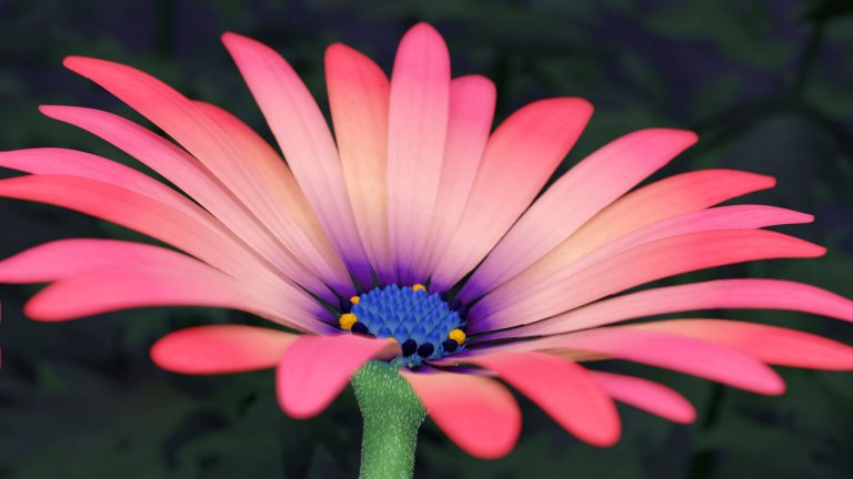 Read more about the article 3D Flower